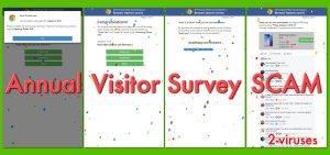 Annual Visitor Survey popup