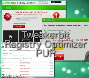 Tweakerbit Registry Optimizer PUP
