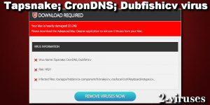 Tapsnake virus (CronDNS, Dubfishicv)