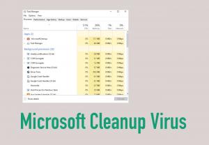 Microsoft Cleanup Virus