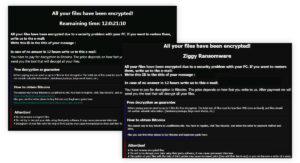 Ziggy Ransomware
